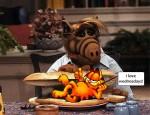 Alf & Garfield??